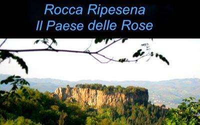Viaggio Vibrazionale e Yoga a Rocca Ripesena